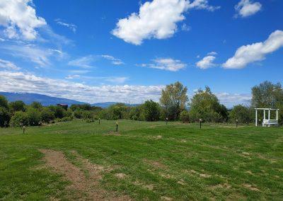 Кадър от 30 Април – със сгъстяването на тревата почти успяхме